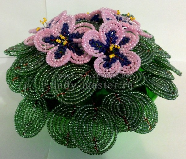 Плетение из бисера: фиалка, фото