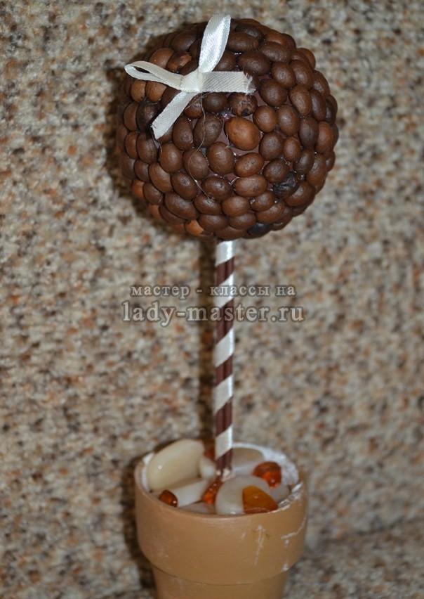 топиарии из кофейных зерен, фото