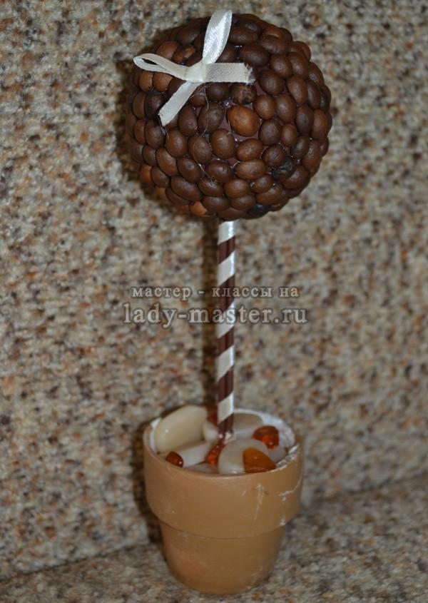 красивые кофейные топиарии, фото