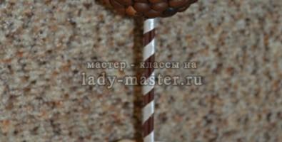 Топиарий кофейное дерево своими руками