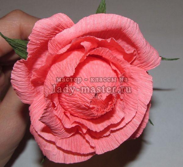 Как сделать розы из гофрированной бумаги с конфетами