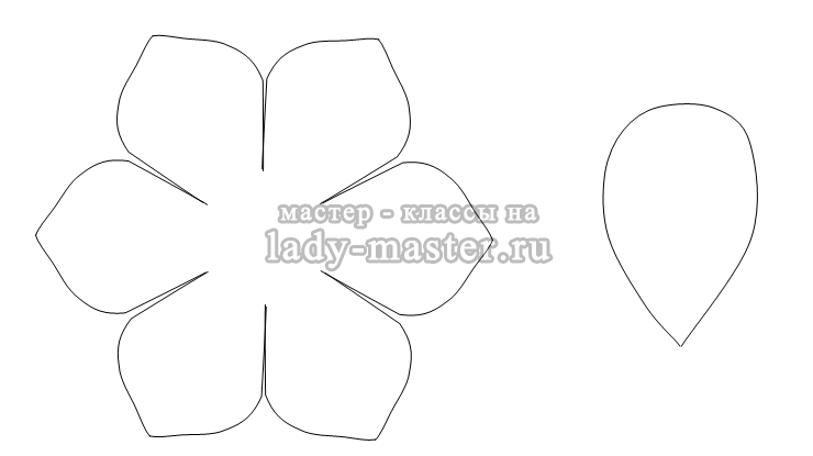 Шаблоны для лепестков цветов