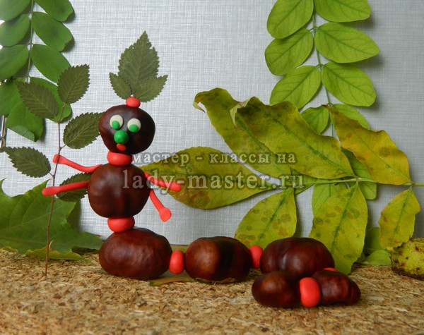 поделка гусеница из каштанов, фото