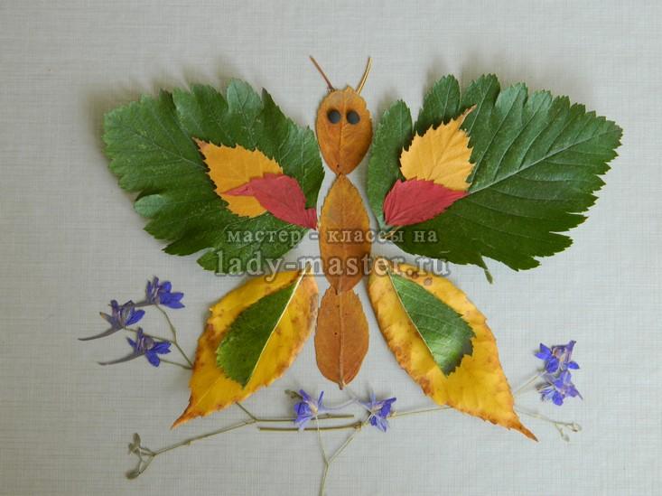 аппликация из листьев бабочка, фото