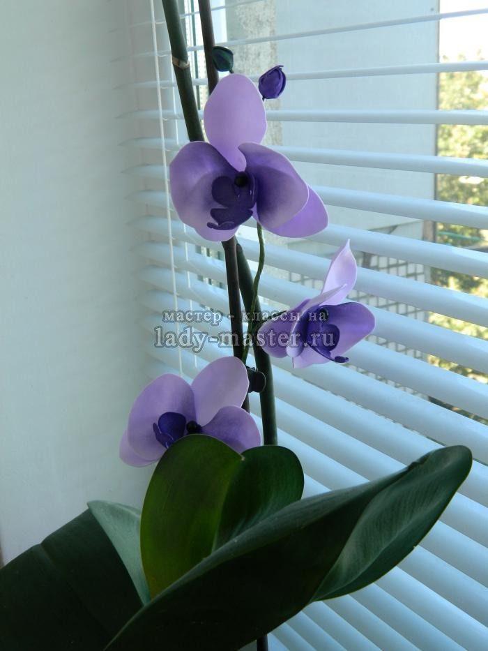 Орхидея из фоамирана своими руками мастер класс фото 168