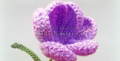 Крокус крючком — пошаговый мастер — класс по вязанию цветка