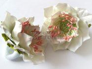 Белые анемоны на резиночках из фоамирана