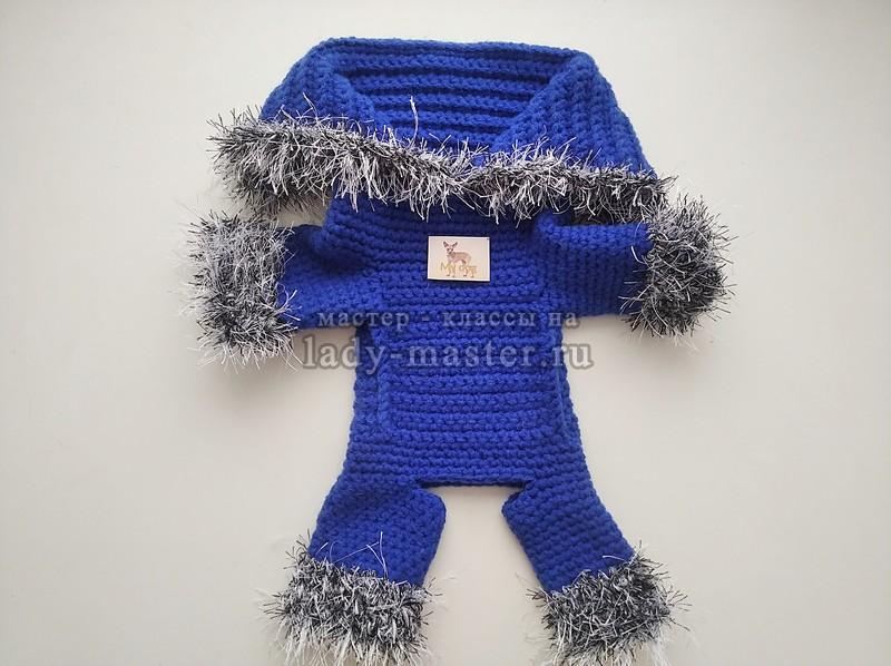 Демисезонный костюм для собаки (тойтерьера) своими руками — вязание крючком
