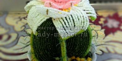 Цветущий кактус из бисера своими руками