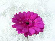 Герберы из фоамирана своими руками — шикарные цветы для украшения интерьера